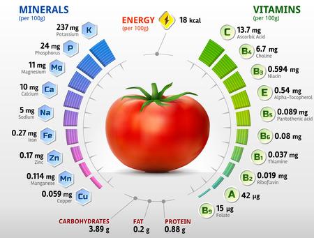 tomates: Las vitaminas y los minerales de tomate. Infografía sobre nutrientes en tomate. Ilustración vectorial cualitativa sobre tomate vitaminas vegetales nutrientes de la comida sana dieta, etc.