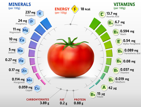tomatoes: Vitamins and minerals of tomato. Infographics about nutrients in tomato. Qualitative vector illustration about tomato vitamins vegetables health food nutrients diet etc