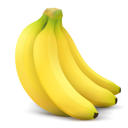 Banana fruit close up. Bunch of bananas isolated on white background. Qualitative vector illustration about banana, agriculture, fruits, cooking, gastronomy, etc
