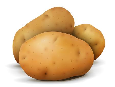 ジャガイモ塊茎のヒープをクローズ アップ。根菜は、白い背景で隔離。農業、野菜、料理、健康食品、料理、olericulture などの定性的なベクトル図