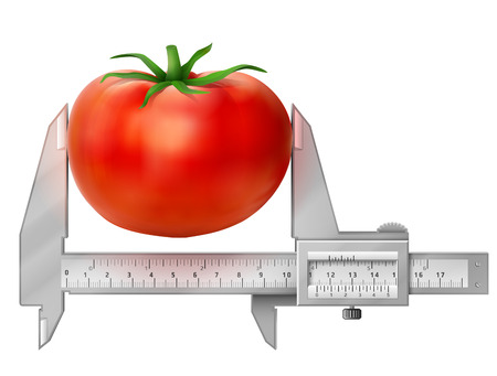 measures: Horizontal caliper measures tomato fruit.
