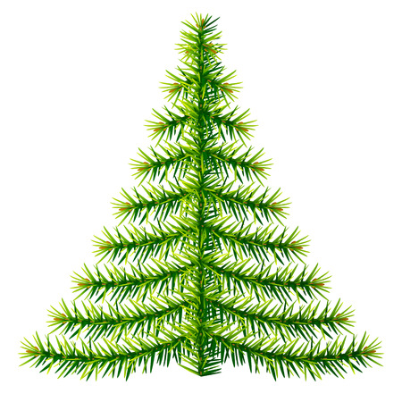silvester: Composition of pine branches in shape of christmas tree. Simple christmas tree silhouette made of fir twigs. Qualitative vector illustration for christmas, new year day, decoration, winter holiday, design, new year eve, silvester, etc