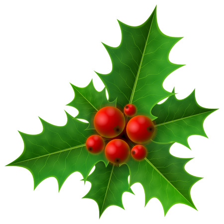 Christmas holly berry isolated on white background. Holly fruits bunch with leaves. Qualitative vector illustration for christmas, new year day, decoration, winter holiday, design, new year eve, plants, etc Ilustracja