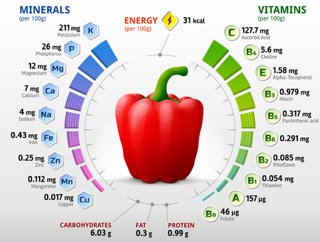Vitamins and minerals of red bell pepper. Infographics about nutrients in capsicum fruit. Qualitative illustration about pepper, vitamins, vegetables, health food, nutrients, diet, etc