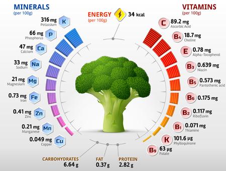 Las vitaminas y los minerales de cabeza de la flor de brócoli. Infografía sobre los nutrientes en la col brócoli. ilustración vectorial cualitativa sobre el brócoli, las vitaminas, verduras, comida sana, los nutrientes, la dieta, etc. Ilustración de vector