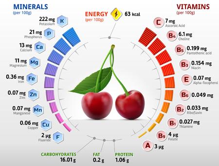 비타민과 체리 과일의 미네랄. 달콤한 체리의 영양소에 대한 인포 그래픽. 체리, 비타민, 과일, 건강 식품, 영양, 다이어트, 등에 대한 질적 그림 일러스트