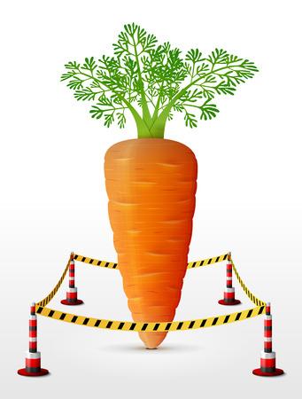 防衛: ニンジンの塊茎が制限区域に位置します。ニンジンの葉には、障壁テープが囲まれています。農業、野菜、料理、グルメ、olericulture などの定性的な  イラスト・ベクター素材