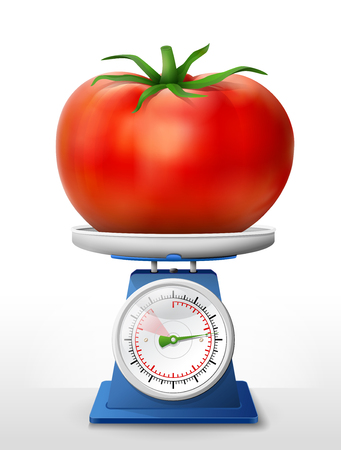 weighing scale: Tomato fruit on scale pan. Weighing tomato with leaf on scales. Qualitative vector illustration about agriculture, vegetables, cooking, health food, gastronomy, olericulture, etc