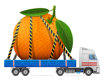 trucking: Road transportation of fresh orange fruit. Delivery of big orange with leaves in back of truck. Qualitative vector image about orange, agriculture, fruits, transportation, gastronomy, trucking, etc