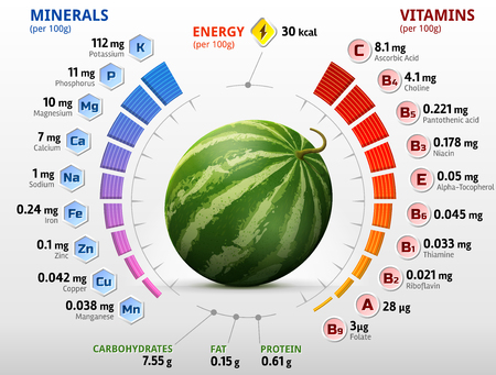 biochemistry: Vitamins and minerals of watermelon fruit. Infographics about nutrients in raw melon. Qualitative illustration for watermelon, vitamins, fruits, agriculture, health food, nutrients, diet, etc