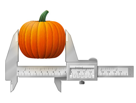 healthful: Horizontal caliper measures pumpkin fruit. Concept of winter squash and measuring tool. Vector illustration for agriculture, vegetables, cooking, halloween, gastronomy, thanksgiving, olericulture, etc