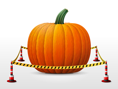 bollard: Pumpkin fruit located in restricted area. Winter squash surrounded barrier tape. Vector illustration about agriculture, vegetables, cooking, halloween, gastronomy, thanksgiving, olericulture, etc Illustration