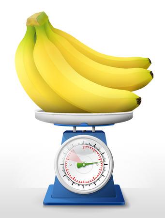 Bananenfrucht auf Waagschale. Bananen auf Waage wiegen. Qualitative Vektorillustration über die Landwirtschaft, Früchte, das Kochen, Biokost, Gastronomie, Botanik, usw.