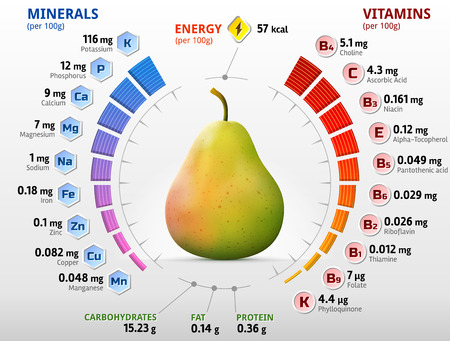 raw food: Vitamins and minerals of pear fruit. Infographics about nutrients in raw pear. Qualitative vector illustration for fruits, vitamins, agriculture, health food, nutrients, diet, etc