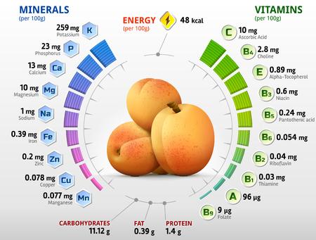 살구 과일의 비타민과 무기질. 원시 살구에있는 영양분에 대한 Infographics. 과일, 비타민, 농업, 건강 식품, 영양소, 다이어트 등에 대한 정성적인 벡터  일러스트