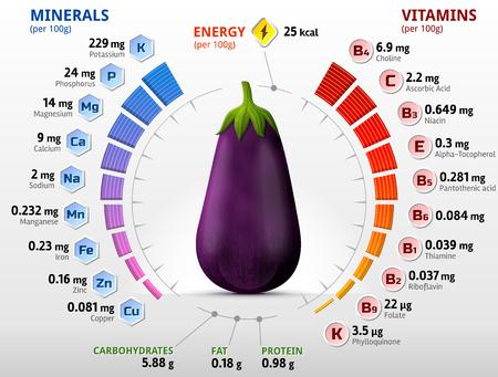 Vitamine e minerali di frutta di melanzane. Infografica di nutrienti nella melanzana cruda. Migliore illustrazione vettoriale per l'agricoltura, verdure, vitamine, alimenti per la salute, nutrienti, dieta, ecc