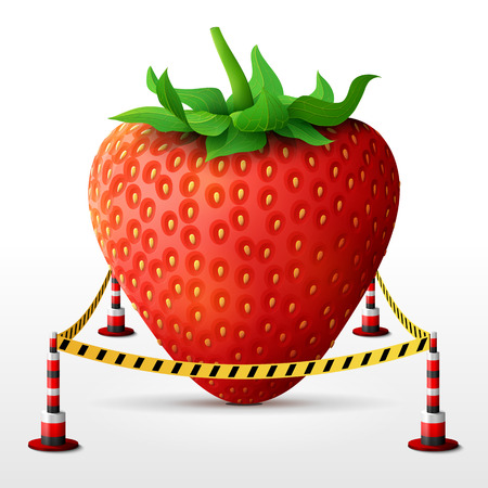 quarantine: Strawberry fruit located in restricted area. Strawberry with leaves surrounded barrier tape. Best vector image about strawberry, agriculture, fruits, cooking, farming, gastronomy, gardening, etc Illustration