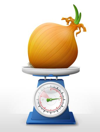 スケール鍋でタマネギ。小さなエシャロット電球の重量を量るスケールに残します。農業、野菜、料理、健康食品、グルメ、olericulture などについて