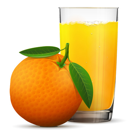 Orange juice in glass isolated on white background. Whole orange fruit with fresh squeezed juice glass. Best vector illustration about beverages, fruits, agriculture, food, gastronomy, etc
