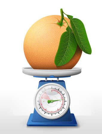 Grapefruit fruit on scale pan.
