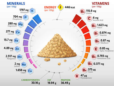 Vitamins and minerals of raw soybeans. Infographics about nutrients in mature soy grain. Vector illustration for soya, health food, agriculture, vitamins, legume, nutrients, diet, etc Vector Illustration