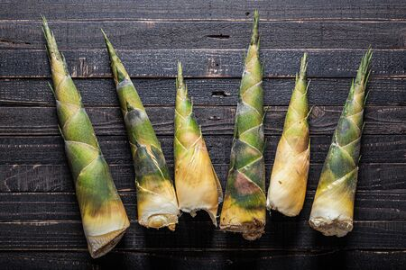 Bamboo shoot on wood background