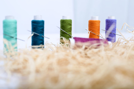 Portrait of colored thread with needle on the rafi grass. Isolated on the white background. Imagens