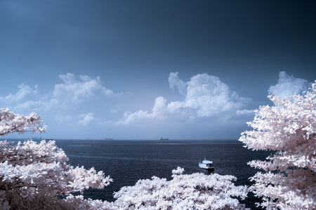 infrared: Sea in Kho-Lan thailand present in infrared style