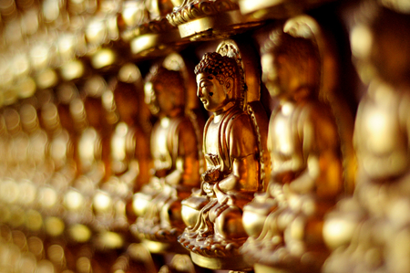 Several Buddha Statue were stick on the wall in side temple. These several small statue are golden shine make us peaceful for Buddhist and for all people.