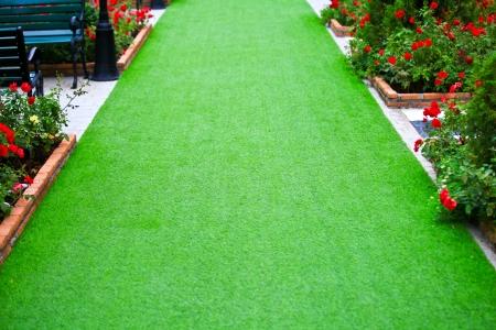 Green Grass path Stock Photo
