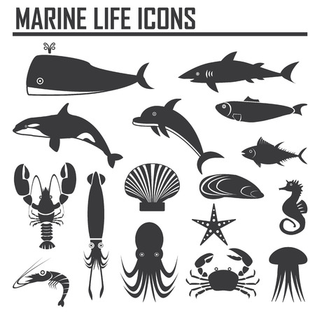 black octopus: marine life icons