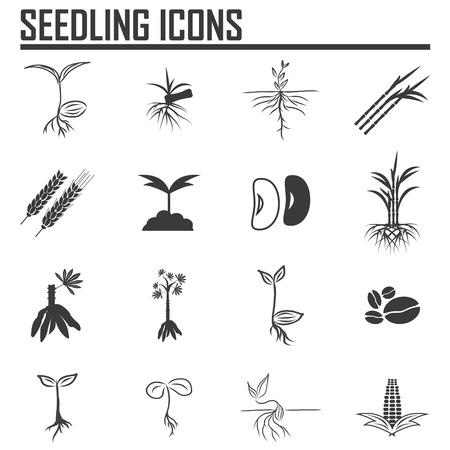 Set of four plant or leaf icons. Vector illustration Illustration