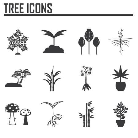 Boom-iconen