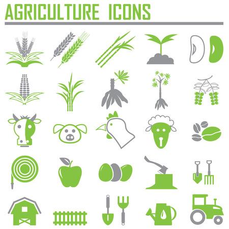 agricultura: iconos agricultura