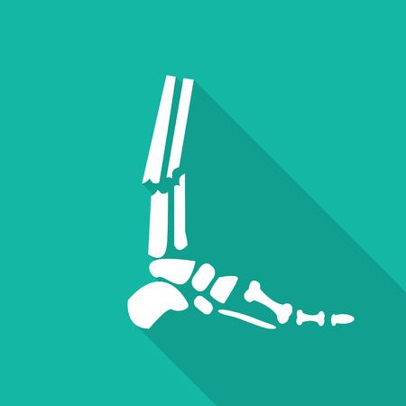 skeleton x ray: Orthopedic  symbol icon with long shadow.