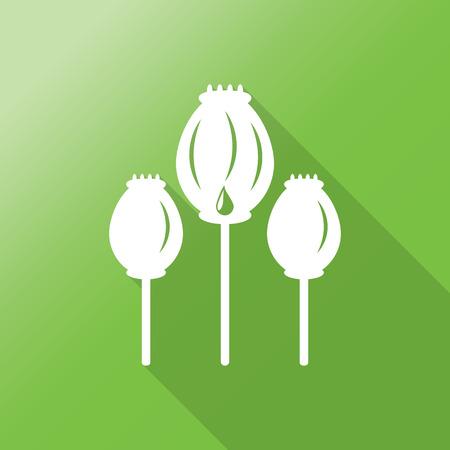 opium poppy: Opium poppy flat icon with long shadow.