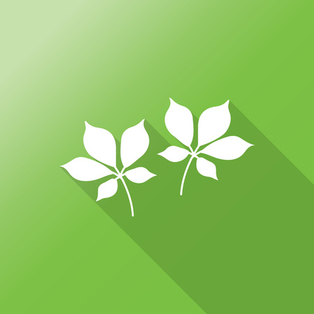 ginseng roots: ginseng flat icon with long shadow.