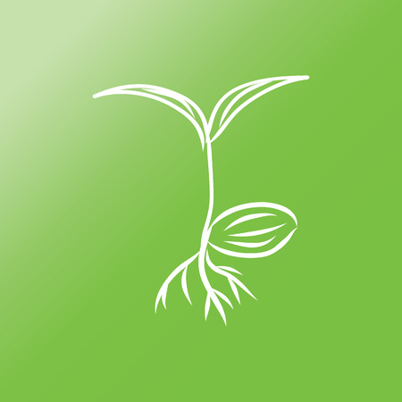 sand asia: oil palm sprout flat icon with long shadow.