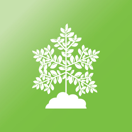treetop: Decorative simple tree flat icon with long shadow. Illustration