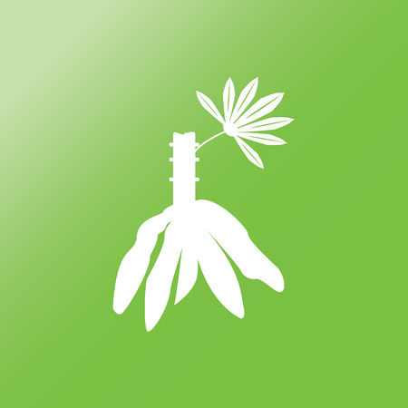 oil crops: cassava icon with long shadow on green background.