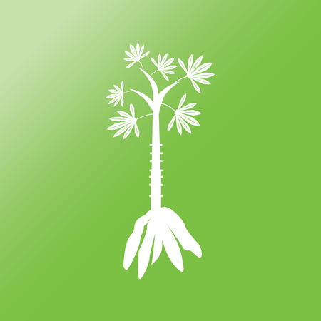 scientific farming: cassava icon with long shadow on green background.