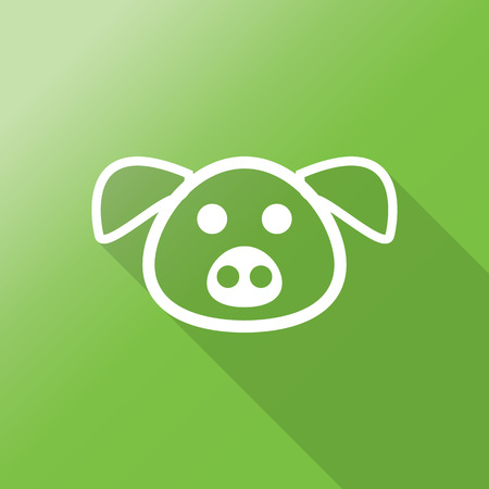 vector cartoons: pig head flat icon with long shadow.