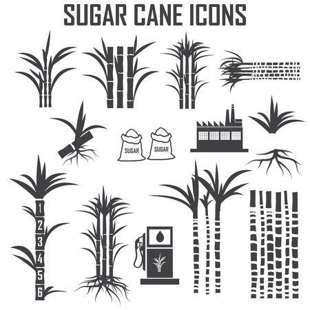 cane: sugar cane icons Illustration