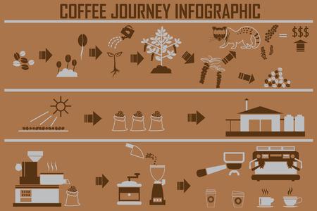 roasting: Coffee infographic flat illustration. Preparation coffee beans.