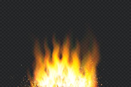 Burning fire isolated. Vector fire flame special light effect. Illustration