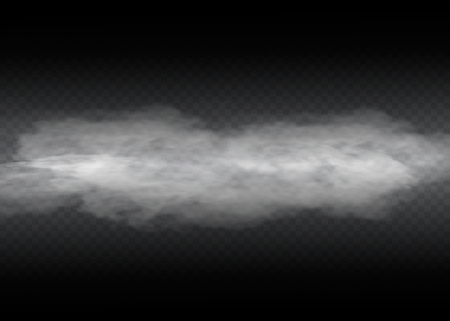 Fog or smoke isolated transparent special effect. White vector cloudiness, mist or smog background. Vector illustration  イラスト・ベクター素材
