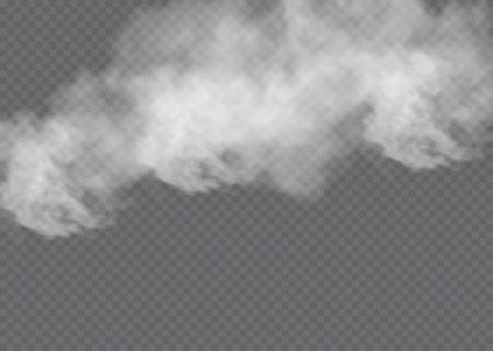 霧や煙の透明な特殊効果分離。白いベクトルの曇り、霧、スモッグの背景。ベクトル図  イラスト・ベクター素材