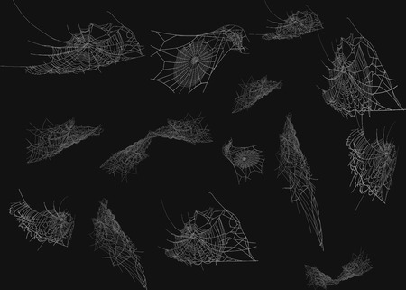 Collection of Cobweb, isolated on black, transparent background. Spiderweb for Halloween design. Spider web elements,spooky, scary, horror halloween decor.
