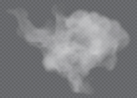 Fog or smoke isolated transparent special effect. White vector cloudiness, mist or smog background. Vector illustration Ilustração