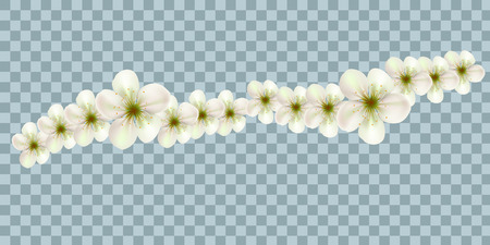 Vector Bali flowers border isolated on transparency grid background